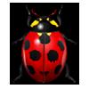 avatar_doma